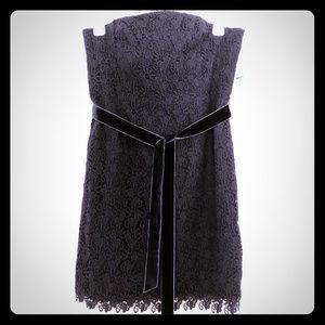 SEXY Tommy Hilfiger Navy Blue Lace Mini Dress, 16